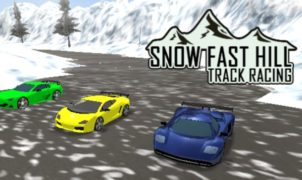 Snow Fast Hill Track Racing